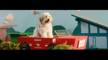 DoorDash TV Spot, 'PetSmart: 20% Off' Song by Barry Louis Polisar