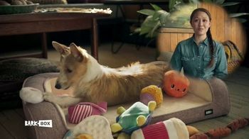 BarkBox TV Spot, 'Spoil Your Dog'