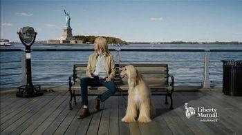 Liberty Mutual TV Spot, 'Resemblance' - Thumbnail 5
