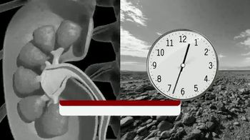 Calcium Oxalate Labs Kidney C.O.P. TV Spot, 'Silently' - Thumbnail 2