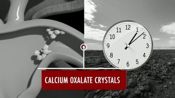 Calcium Oxalate Labs Kidney C.O.P. TV Spot, 'Silently'