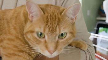 Naturally Fresh TV Spot, 'New Cat Parents' - Thumbnail 6