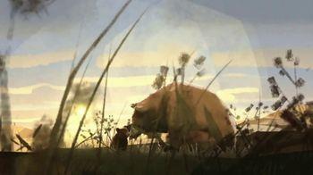International Animal Rescue TV Spot, 'Brown Bears' - Thumbnail 2