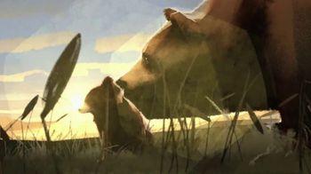 International Animal Rescue TV Spot, 'Brown Bears' - Thumbnail 3