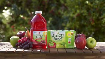 Juicy Juice TV Spot, 'Slide Into Summer Sweepstakes' - Thumbnail 10