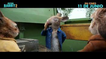 Peter Rabbit 2: The Runaway - Alternate Trailer 13