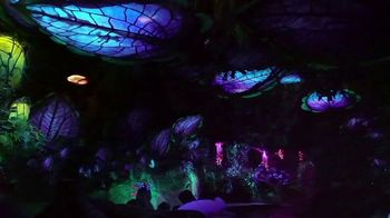 Disney World TV Spot, 'Tomorrow Begins Today' Song by Rex Allen - Thumbnail 8