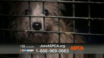 ASPCA TV Spot, 'Complete Darkness: Free Membership Kit and T-Shirt'
