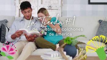 Ashley HomeStore Spring Sale TV Spot, 'Celebra a mamá' [Spanish] - Thumbnail 10