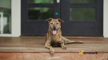 Embark DNA TV Spot, 'Discover Your Dog's Story' - Thumbnail 5
