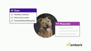 Embark DNA TV Spot, 'Discover Your Dog's Story' - Thumbnail 7