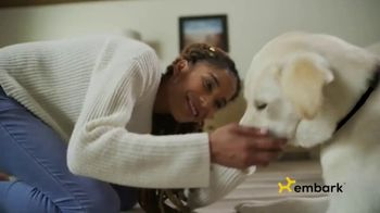 Embark DNA TV Spot, 'Discover Your Dog's Story' - Thumbnail 8