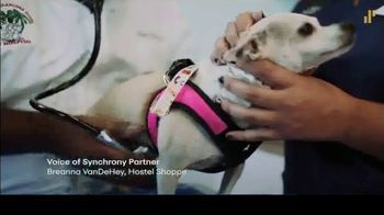 Synchrony Financial TV Spot, 'Small Businesses' - Thumbnail 7