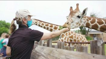 Association of Zoos and Aquariums TV Spot, 'A Safe Return' - 6 commercial airings
