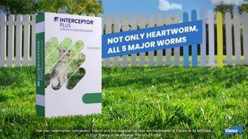 Elanco Companion Animal Health Interceptor Plus TV Spot, 'Close the Gap' - Thumbnail 9