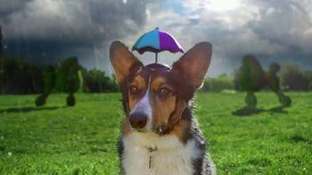 Elanco Companion Animal Health Interceptor Plus TV Spot, 'Close the Gap' - Thumbnail 2