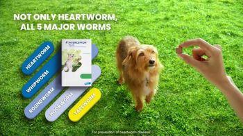 Elanco Companion Animal Health Interceptor Plus TV Spot, 'Close the Gap' - Thumbnail 5