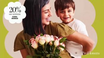 ProFlowers TV Spot, 'To All the Moms: 20%'