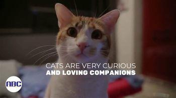 Animal Behavior College TV Spot, 'Pesky Behavioral Challenges'