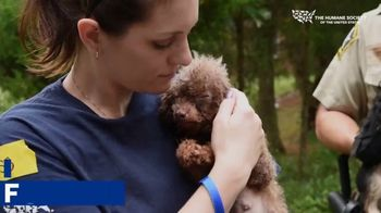 Humane Society of the United States TV Spot, 'All Around Us' - Thumbnail 7