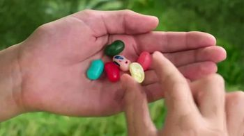 Jelly Belly TV Spot, 'World of Flavor'