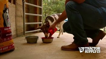Tractor Supply Co. TV Spot, 'Spring Is Alive' - Thumbnail 5