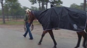 Classic Equine TV Spot, 'Mark of a True Horseman' - Thumbnail 2