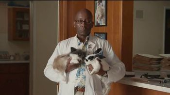 American Express TV Spot, 'Amex Biz Card Chronicles: The Bunny'