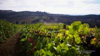 Willamette Valley Vineyards TV Spot, 'Safe and Relaxing Setting' - Thumbnail 6