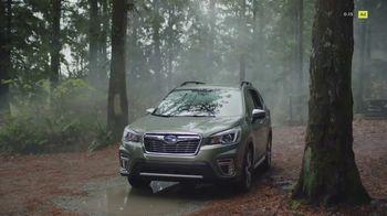Subaru Forester TV Spot, 'Dangerous Badger' [T1] - Thumbnail 1