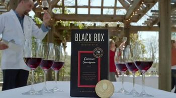 Black Box Wines TV Spot, 'Souvenir' - Thumbnail 3