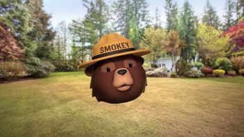 Smokey Bear Campaign TV Spot, 'Al Roker Helps Smokey Bear' - Thumbnail 3