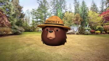 Smokey Bear Campaign TV Spot, 'Al Roker Helps Smokey Bear' - Thumbnail 4