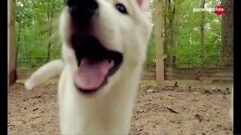 Guaranteed Rate TV Spot, 'Puppy Fun' - Thumbnail 6