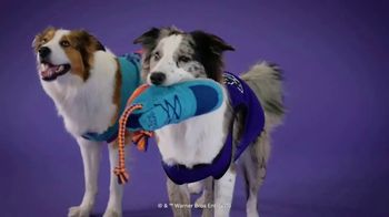 Space Jam 2 BarkBox TV Spot, 'Out of This World'