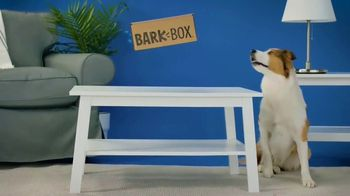 Space Jam 2 BarkBox TV Spot, 'Out of This World' - Thumbnail 3
