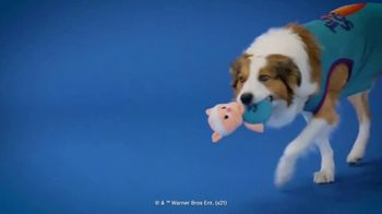 Space Jam 2 BarkBox TV Spot, 'Out of This World' - Thumbnail 8