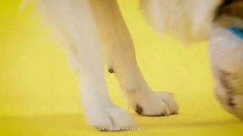 Space Jam 2 BarkBox TV Spot, 'Out of This World' - Thumbnail 9