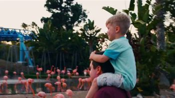 SeaWorld San Diego 4th of July Sale TV Spot, 'Spread Your Wings: $59.99' - Thumbnail 7