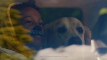Toyota TV Spot, 'Show' Song by Laney Jones [T2] - Thumbnail 1