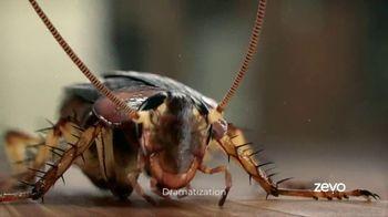 Zevo TV Spot, 'Roaches' - Thumbnail 10