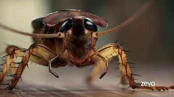 Zevo TV Spot, 'Roaches' - Thumbnail 9
