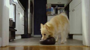 The Honest Kitchen TV Spot, 'Sameness' - Thumbnail 8