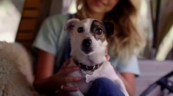 Bobs From SKECHERS TV Spot, 'Bobs Skippers: ayudar a las mascotas' [Spanish]