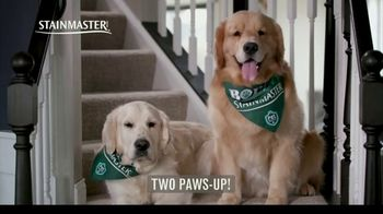 STAINMASTER TV Spot, 'Professional Carpet Testers: Charlie and Bodie' - Thumbnail 9