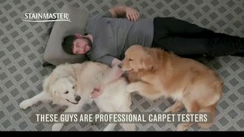 STAINMASTER TV Spot, 'Professional Carpet Testers: Charlie and Bodie' - Thumbnail 3