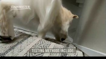 STAINMASTER TV Spot, 'Professional Carpet Testers: Charlie and Bodie' - Thumbnail 4