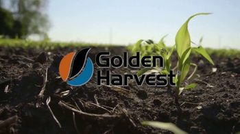 Golden Harvest TV Spot, 'Rooted'