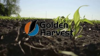 Golden Harvest TV Spot, 'Rooted' - Thumbnail 2