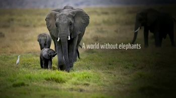 World Wildlife Fund TV Spot, 'A World Without Elephants' Song by Louis Armstrong - Thumbnail 2